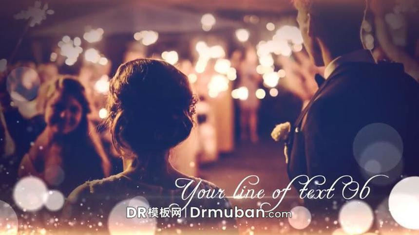 DR模板 达芬奇模板 唯美粒子特效优雅照片展示达芬奇婚礼视频模板-DR模板网