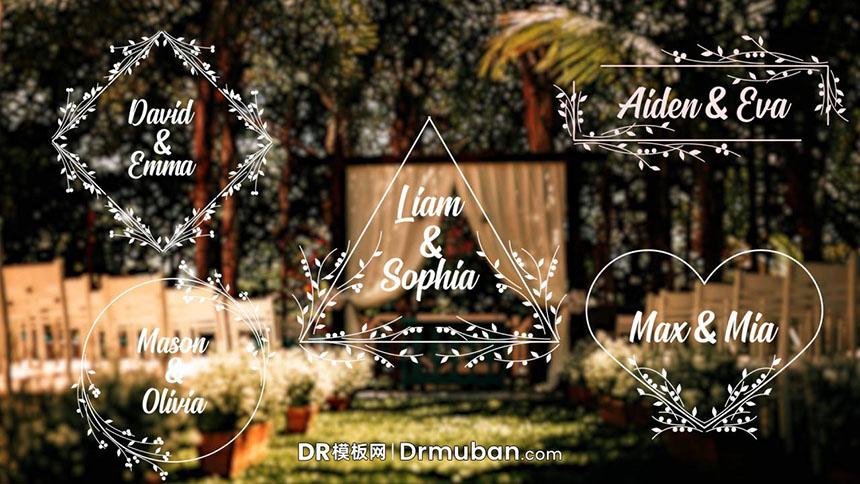 DR模板 浪漫纯洁动态全屏标题婚礼告白短视频达芬奇模板下载