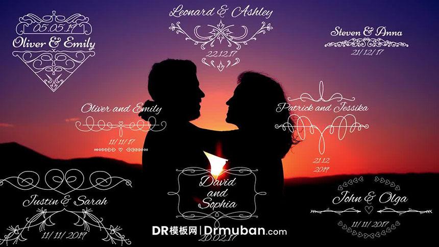 达芬奇模板 8个复古花纹婚礼动态标题DR模板下载