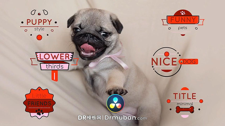DR模板 宠物卡通创意短片动态标题达芬奇模板下载-DR模板网