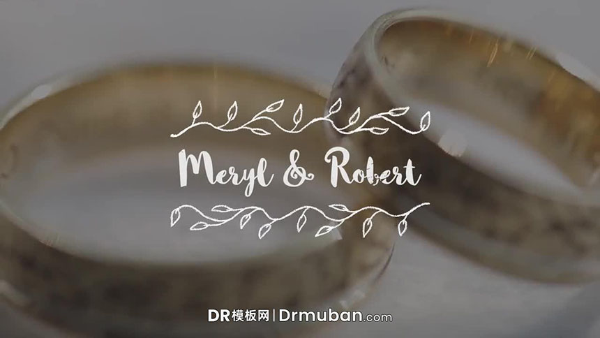 DR模板 婚礼视频剪辑手绘全屏标题达芬奇模板