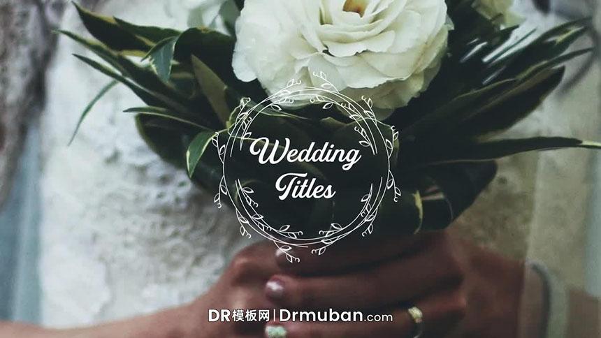婚礼标题DR模板 浪漫花环动态告白短视频标题达芬奇模板