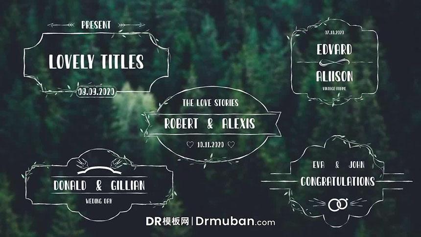 DR模板 浪漫情人节婚礼表白全屏动态标题达芬奇模板下载
