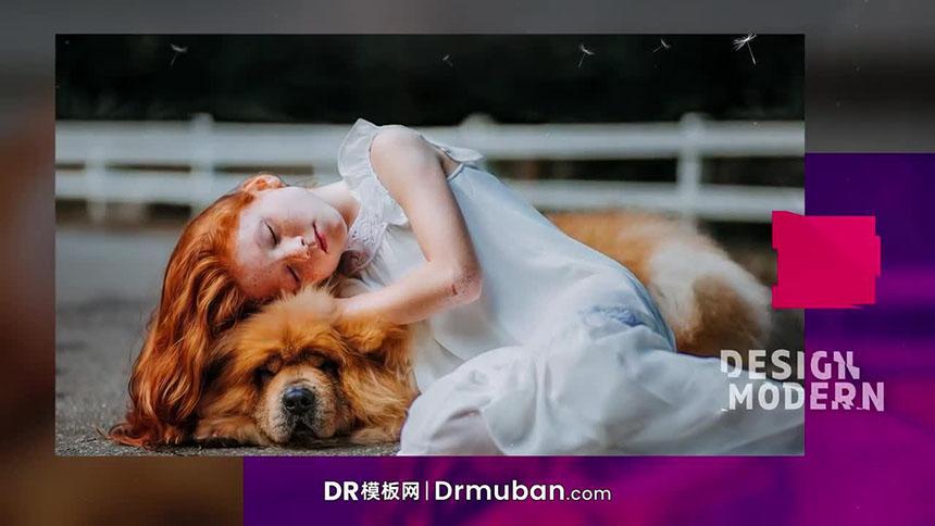 达芬奇模板 唯美照片展示通用幻灯片Dr模板下载