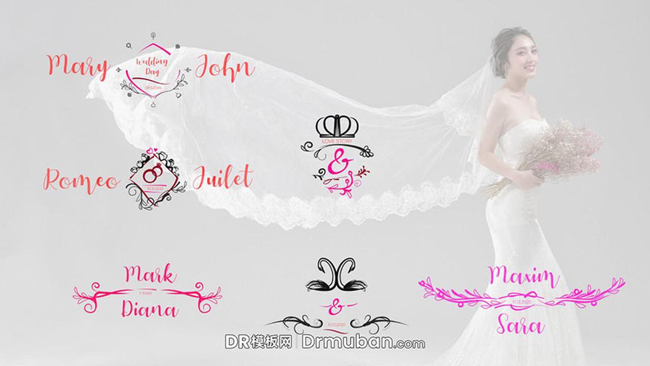 DR标题模板 浪漫婚礼生长动画标题文字动画达芬奇模板