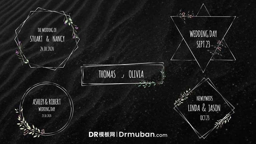 达芬奇模板 婚礼标题文字动画达芬奇DR模板免费下载