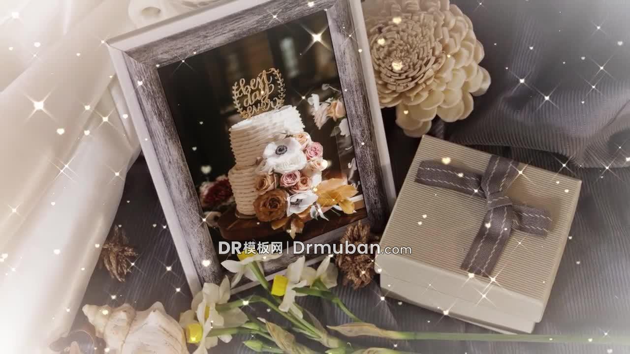 达芬奇电子相册模板 浪漫婚礼告白记录短片DR模板下载