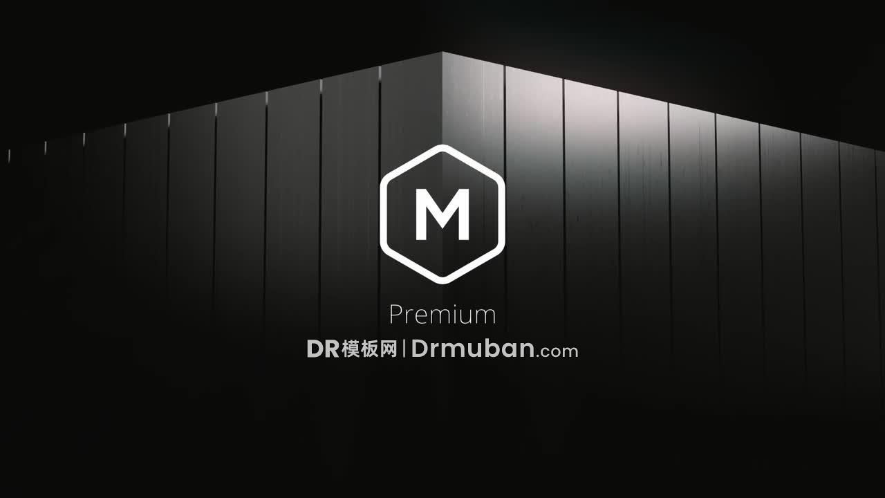 达芬奇模板 黑色奢侈品牌企业宣传片头logo展示DR模板