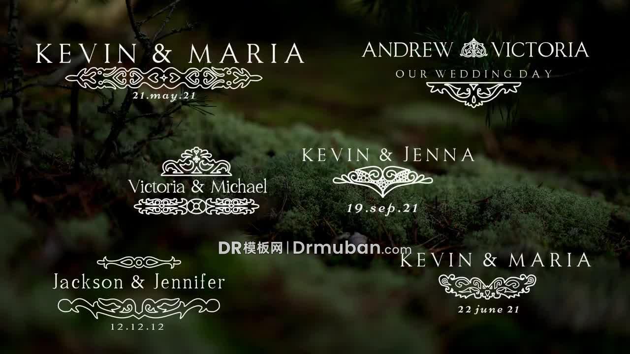 达芬奇标题预设 复古纹饰婚礼短视频动态标题DR预设下载